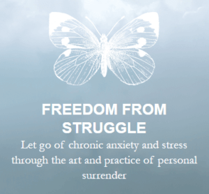 freedom from struggle living from a place of surrender michael a singer online course
