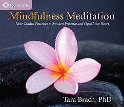 Mindfulness Meditation Tara Brach