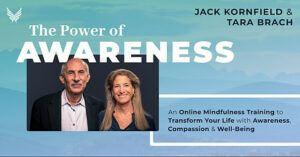 The Power of Awareness online training Kornfield & Brach