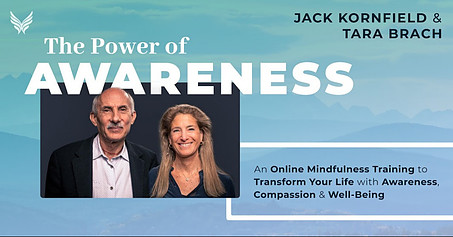The Power of Awareness: Online Mindfulness Training