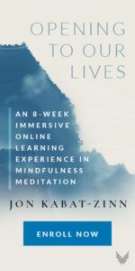 Jon Kabat Zinn Opening to Our Lives 8 Week Online Intensive Course