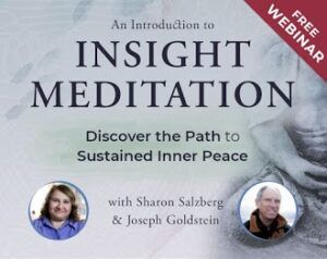 INSIGHT MEDITATION FREE WEBINAR